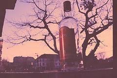 La encuesta sobre el alcoholismo
